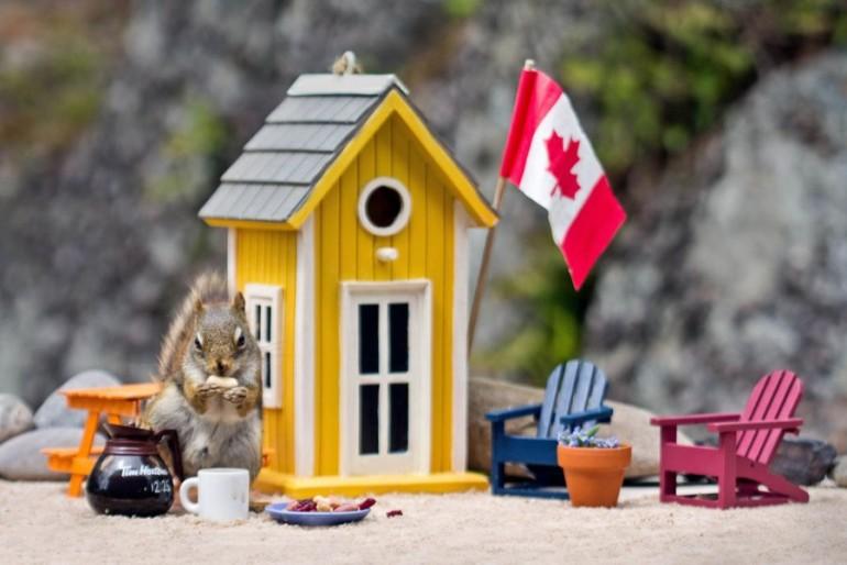 стоимость проживания в Канаде стоимость жилья в Канаде