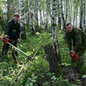 Работа в Чехии в лесхозе