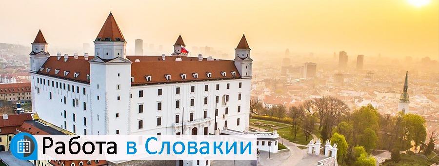 Медицинское образование в словакии kia повар где учиться в украине