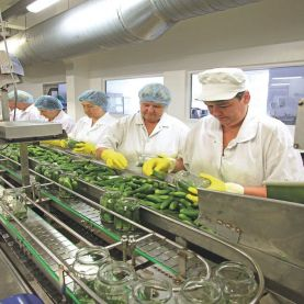 вакансия на консервный завод